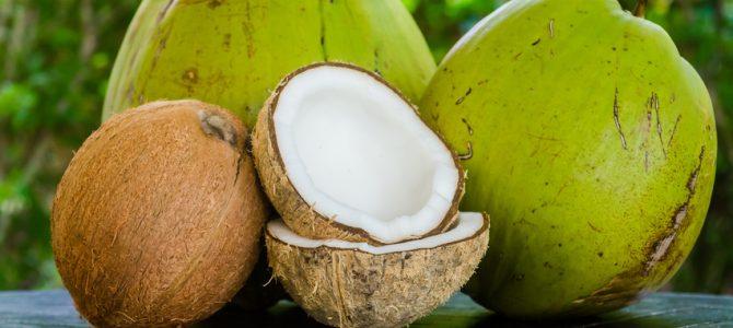 Kokosöl ist kein Palmöl und stammt nicht von Ölpalmen